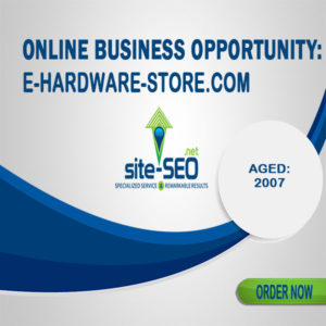 Online Business Opportunity-E_Hardware_Store