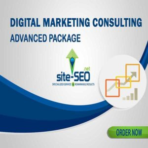 Do You Need Help Growing Your Business? Digital Marketing Consulting-Advanced Package