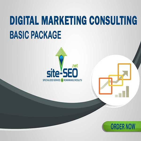 Do You Need Help Growing Your Business? Digital Marketing Consulting-Basic Package