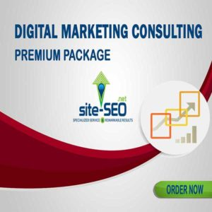 Do You Need Help Growing Your Business? Digital Marketing Consulting-Premium Package