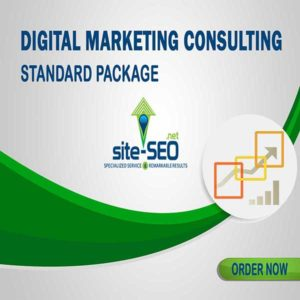 Do You Need Help Growing Your Business? Digital Marketing Consulting-Standard Package