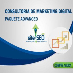 Consultoria Marketing Digital-Paquete Advanced