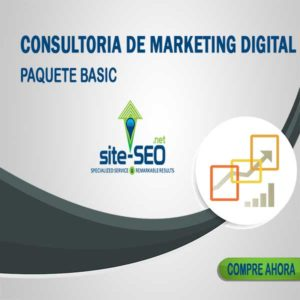 Consultoria Marketing Digital-Paquete Basic
