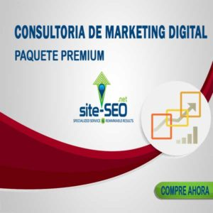 Consultoria Marketing Digital-Paquete Premium