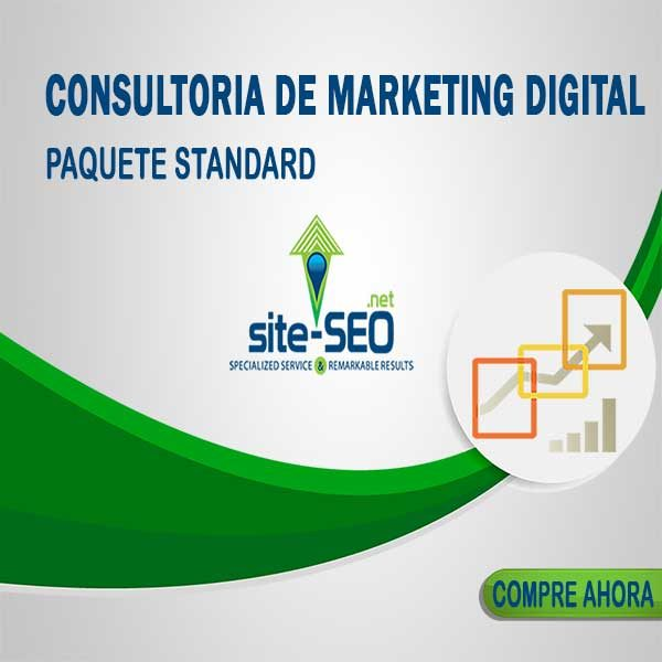 Consultoria Marketing Digital-Paquete Standard